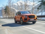 Bentley Bentayga V8 降低售价门槛